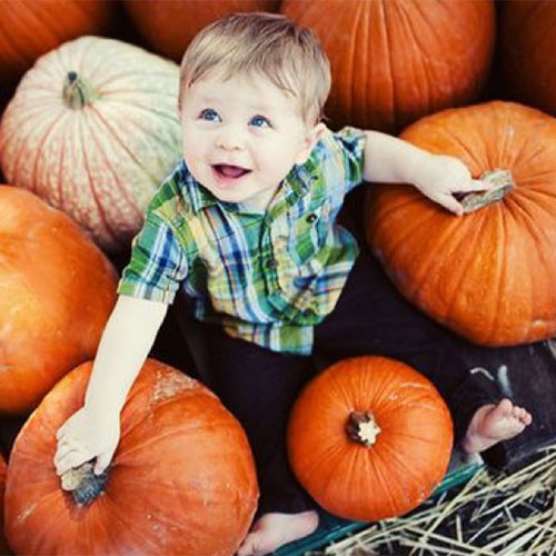 Join us for our annual Fall Festival with our Pumpkin Fest!