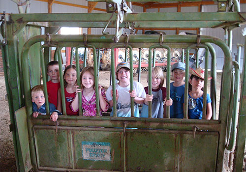 Take a scenic ride through the countryside on our tractor and horse pulled hay rides!