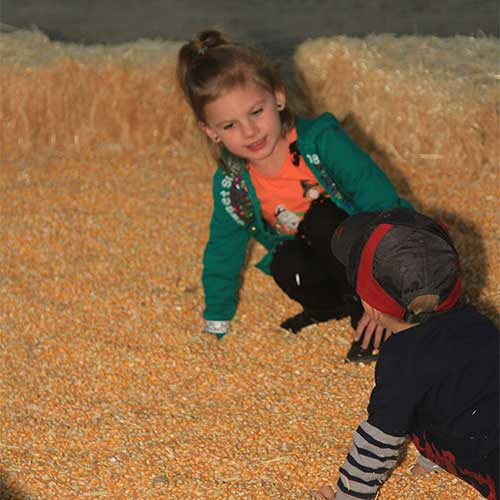 The kids will love all of the family friendly fall activities on our real working produce farm!